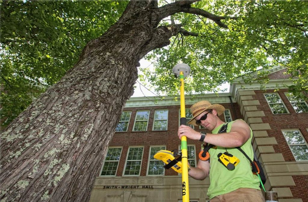 Arborist Consultations-Oakland Park FL Tree Trimming and Stump Grinding Services-We Offer Tree Trimming Services, Tree Removal, Tree Pruning, Tree Cutting, Residential and Commercial Tree Trimming Services, Storm Damage, Emergency Tree Removal, Land Clearing, Tree Companies, Tree Care Service, Stump Grinding, and we're the Best Tree Trimming Company Near You Guaranteed!