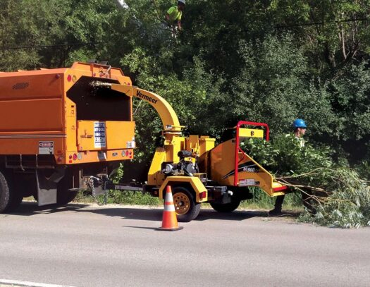 Commercial Tree Services-Oakland Park FL Tree Trimming and Stump Grinding Services-We Offer Tree Trimming Services, Tree Removal, Tree Pruning, Tree Cutting, Residential and Commercial Tree Trimming Services, Storm Damage, Emergency Tree Removal, Land Clearing, Tree Companies, Tree Care Service, Stump Grinding, and we're the Best Tree Trimming Company Near You Guaranteed!