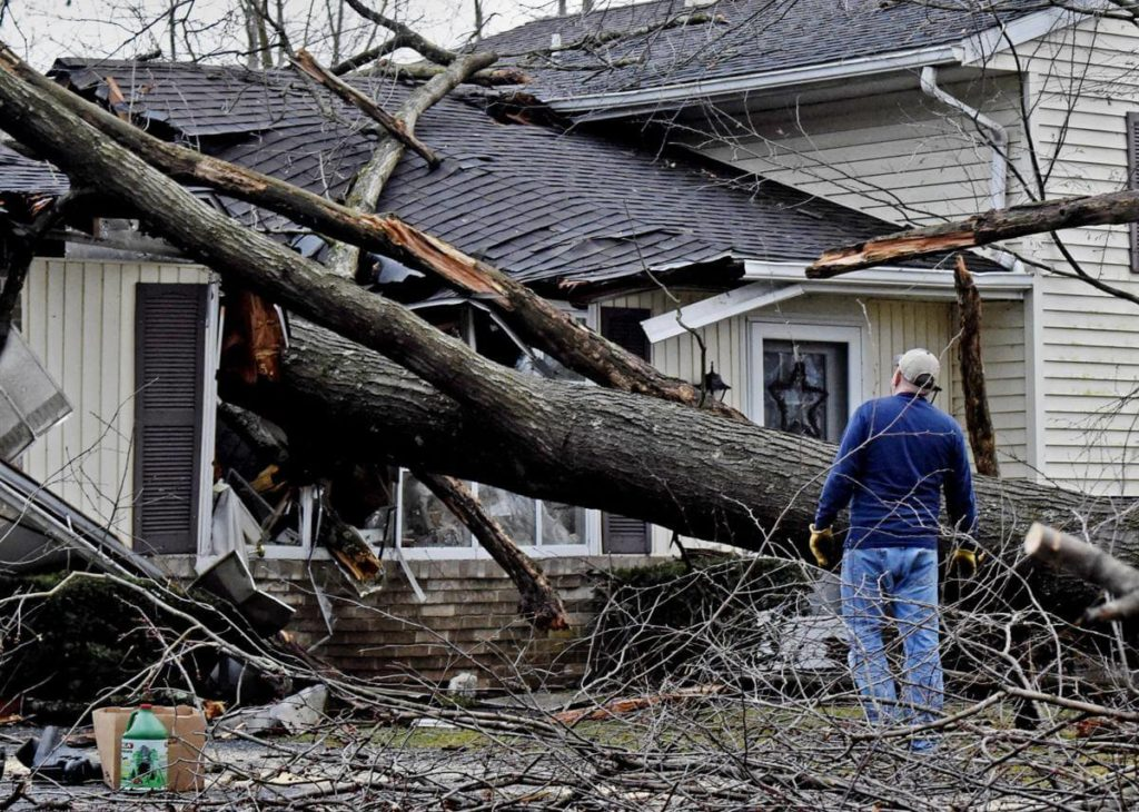 Storm Damage-Oakland Park FL Tree Trimming and Stump Grinding Services-We Offer Tree Trimming Services, Tree Removal, Tree Pruning, Tree Cutting, Residential and Commercial Tree Trimming Services, Storm Damage, Emergency Tree Removal, Land Clearing, Tree Companies, Tree Care Service, Stump Grinding, and we're the Best Tree Trimming Company Near You Guaranteed!